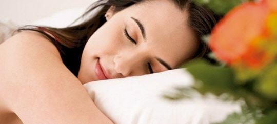 สมุนไพรบำบัดเครียด แก้โรคนอนไม่หลับ